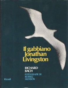 Gabbiano Jonathan Livingston, Il