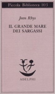Grande mare dei Sargassi, Il